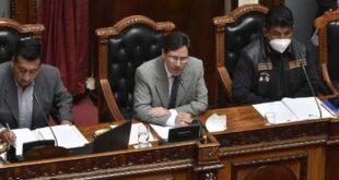Romeró justificó la Ley de Convocatoria a Elecciones Foto: APG Noticias