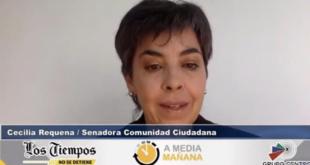 La senadora de Comunidad Ciudadana (CC), Cecilia Requena. | Captura